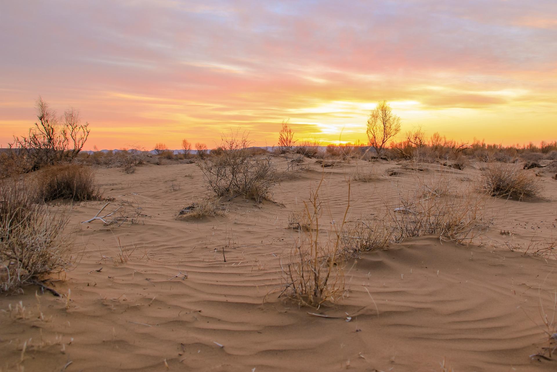 desert-3405202_1920
